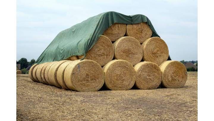 Jak zabezpieczyć płody rolne przed złą pogodą?