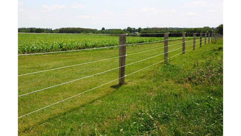 Co należy wiedzieć o ogrodzeniach elektrycznych?